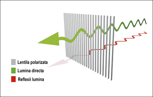 Lentila polarizata Quattroflex